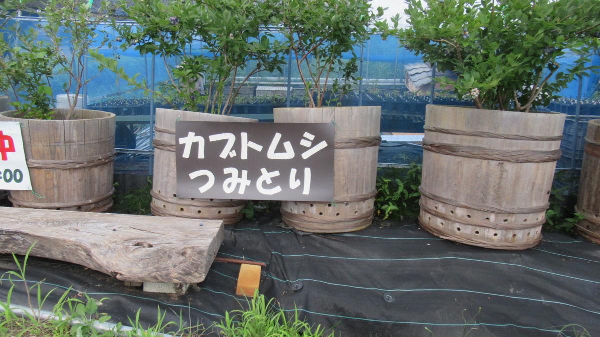 f:id:murayama147:20210719200322j:plain