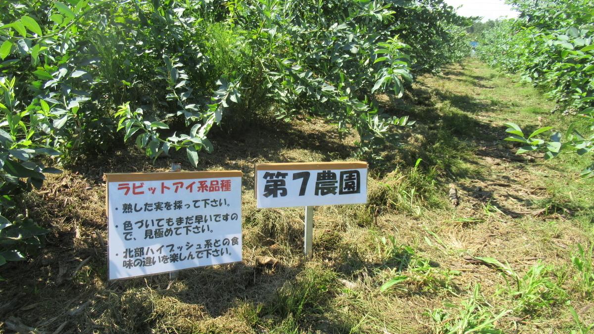 f:id:murayama147:20210722201200j:plain
