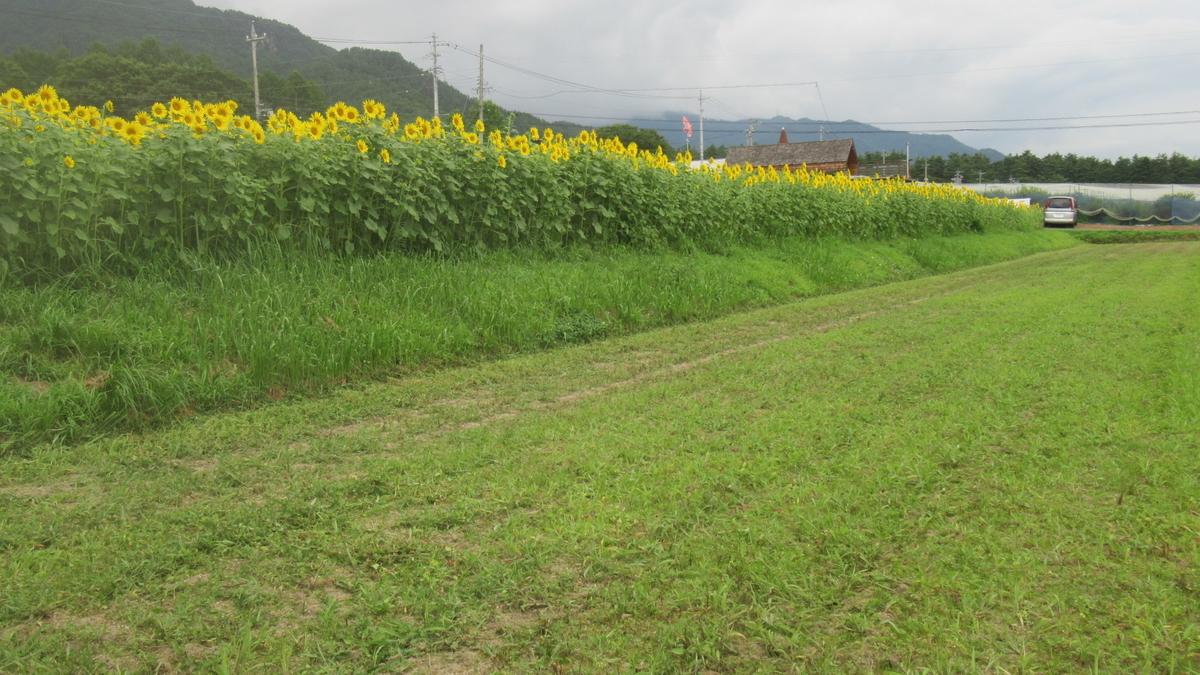 f:id:murayama147:20210729173849j:plain