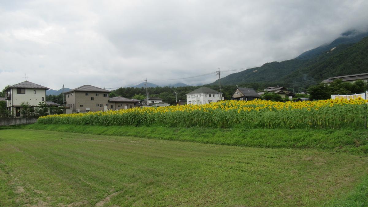 f:id:murayama147:20210729173855j:plain