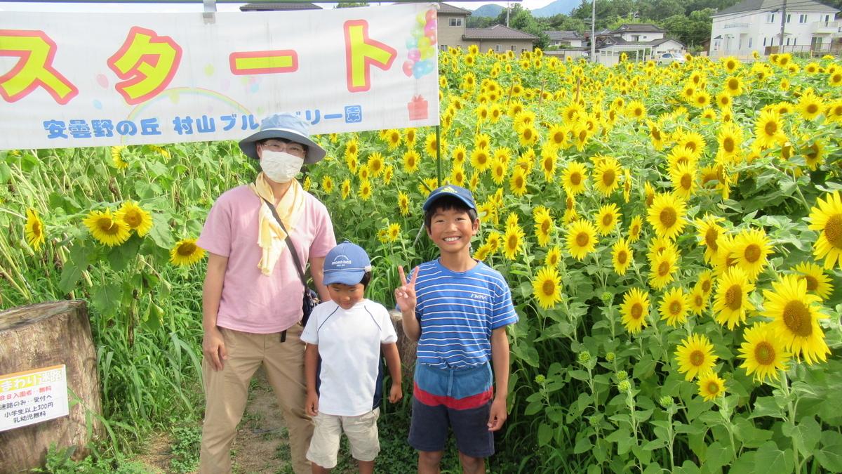 f:id:murayama147:20210803190243j:plain