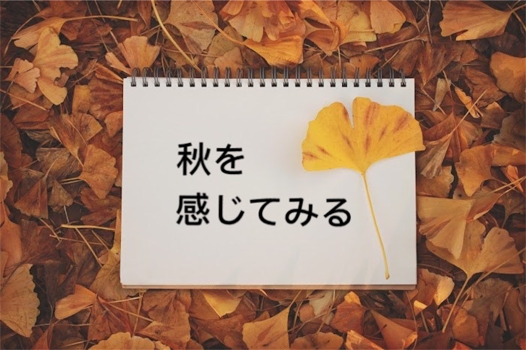 f:id:murayuka:20170923203230j:image