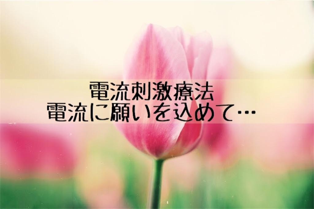 f:id:murayuka:20171008175043j:image