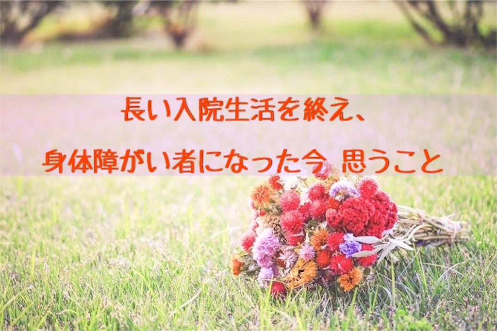 f:id:murayuka:20171105104657j:image