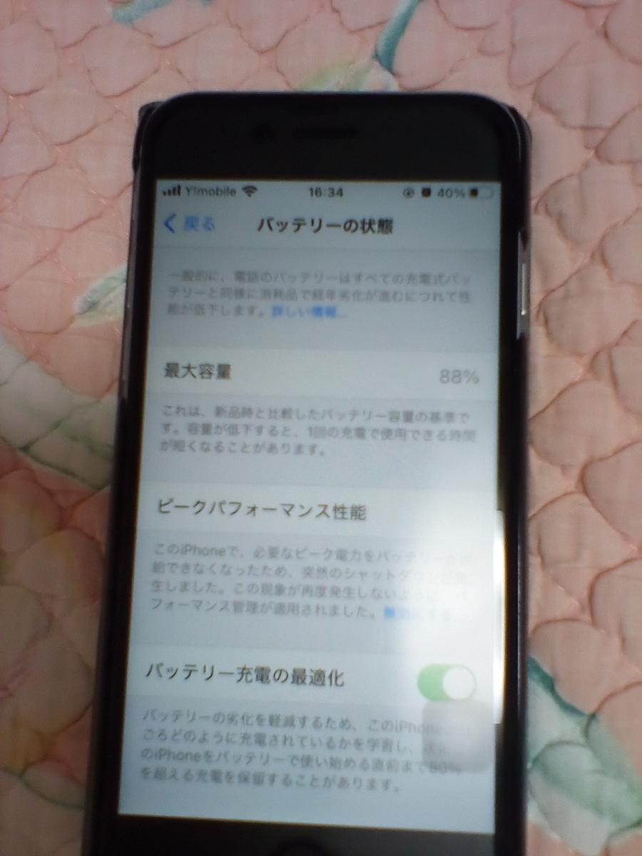 f:id:murinaku:20201204214721j:plain