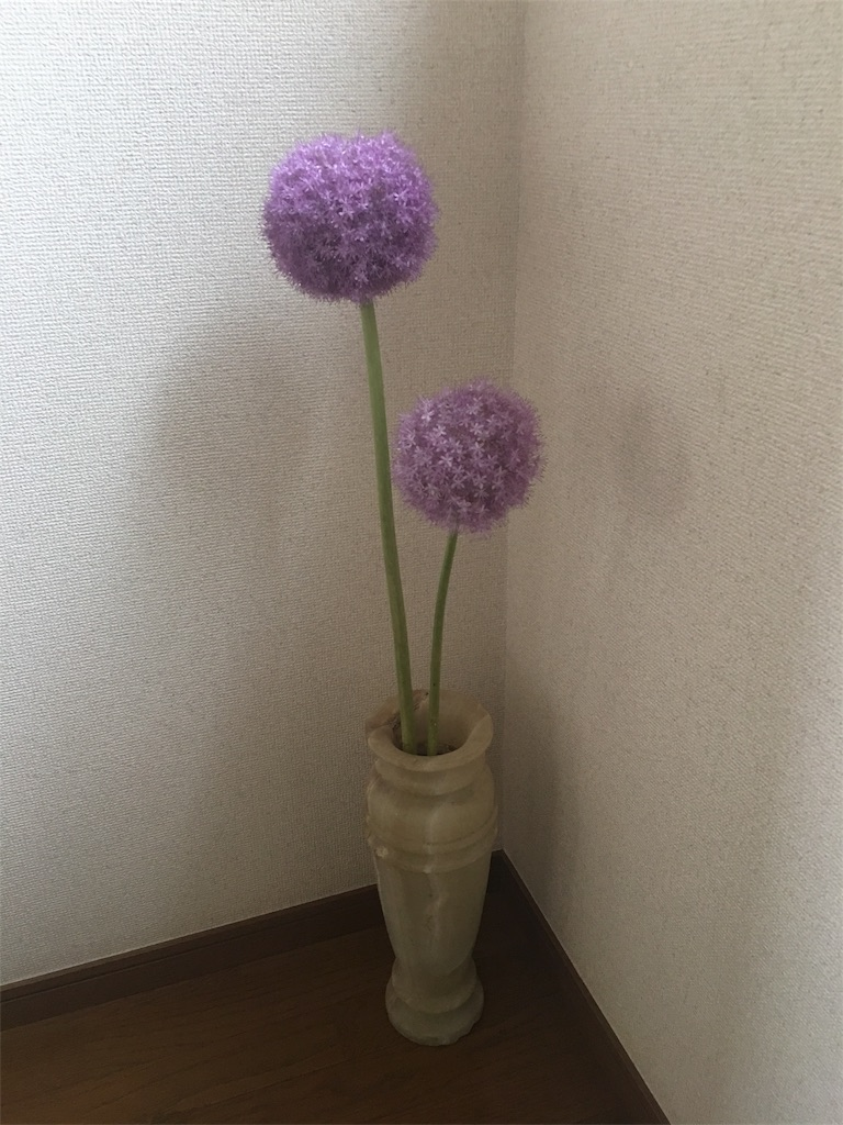 f:id:muroga001:20170614090243j:image