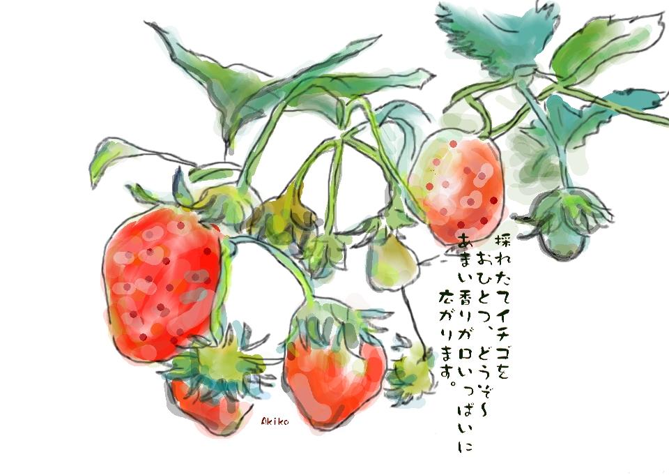 f:id:mursakisikibu:20160216112548j:plain