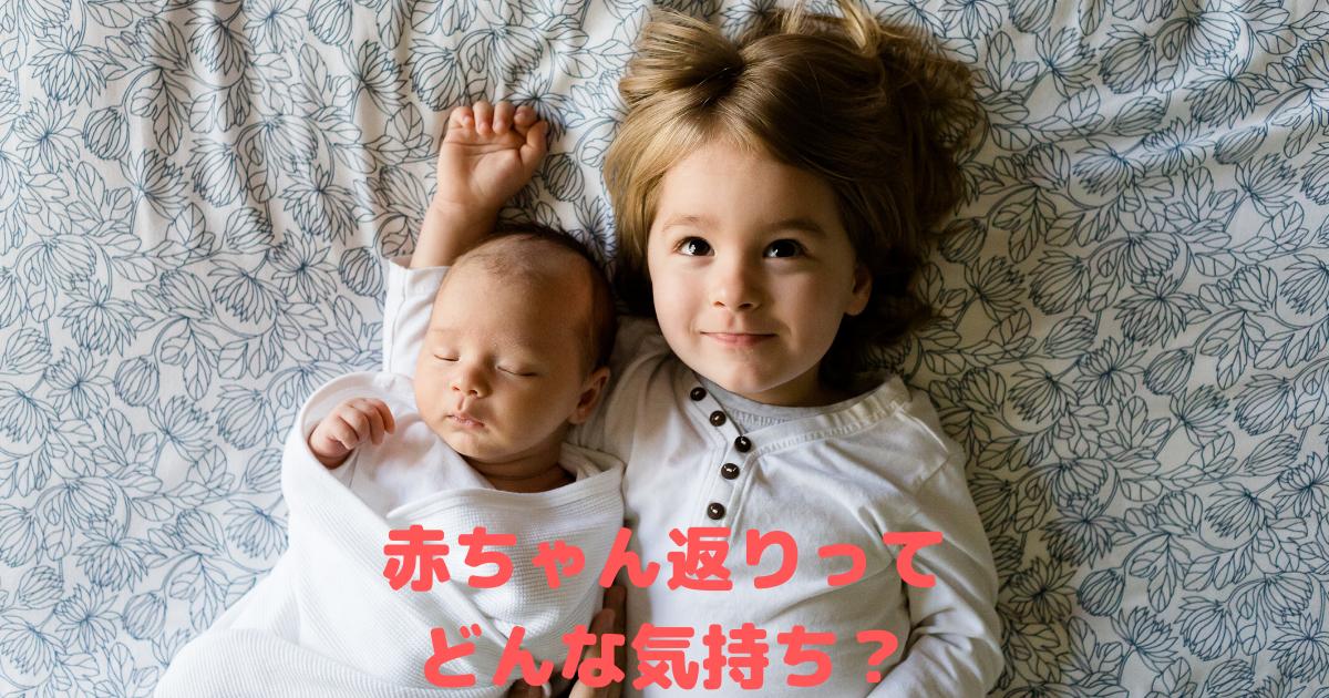 f:id:muruko-diary:20210411225512p:plain