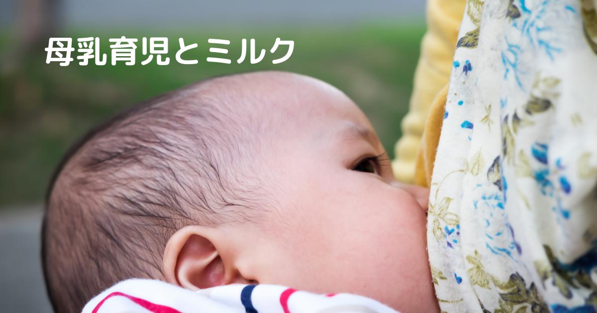 f:id:muruko-diary:20210419112016p:plain