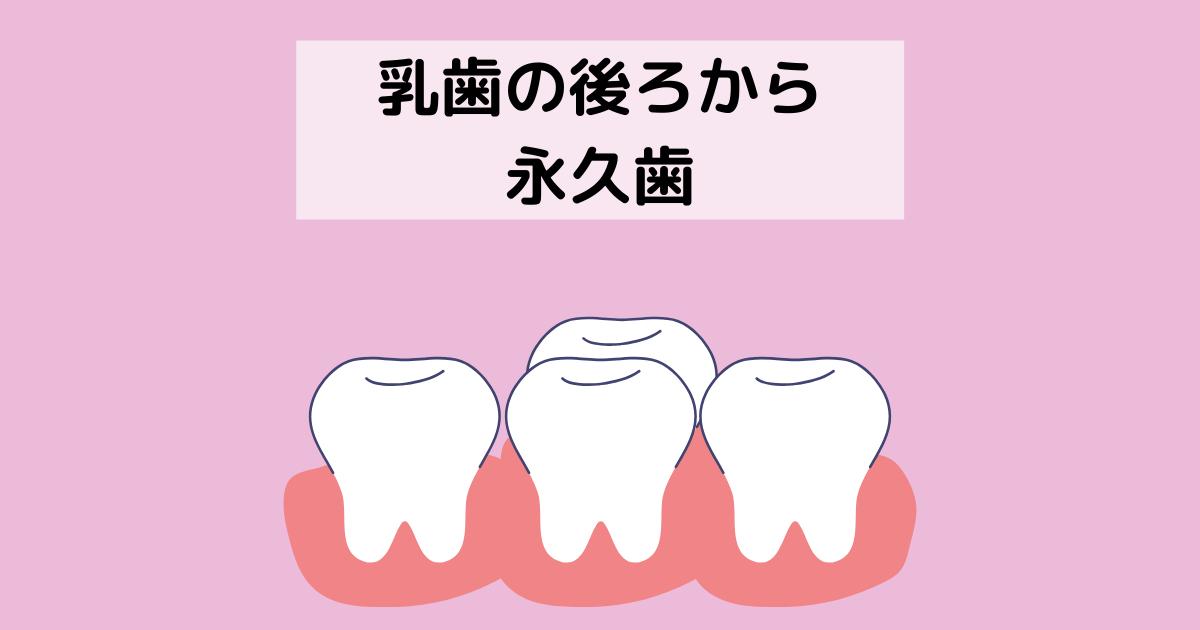 f:id:muruko-diary:20211012145758p:plain