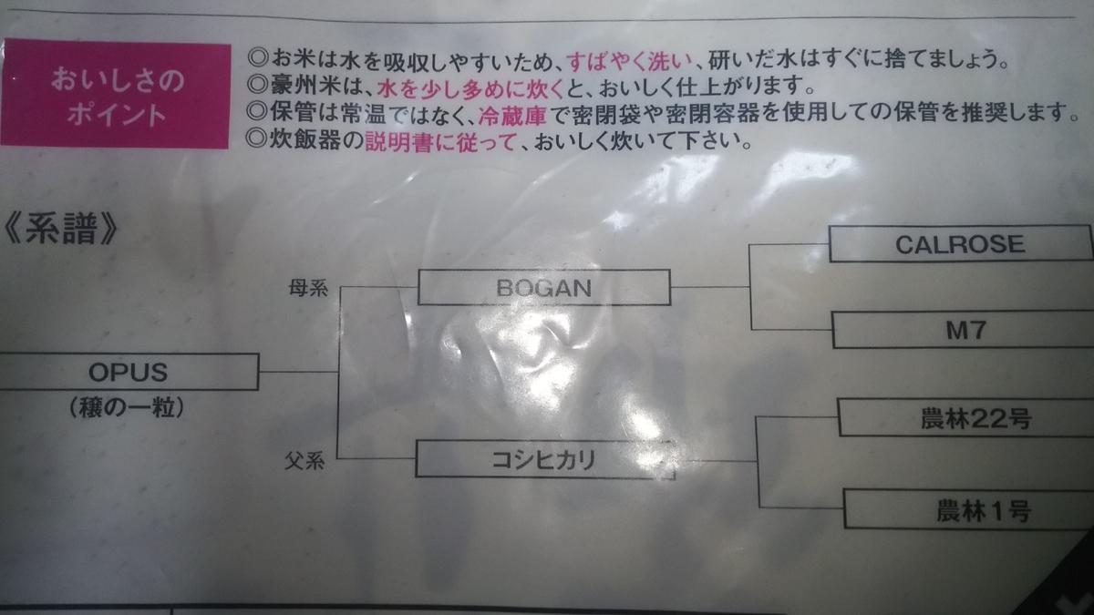 f:id:muryoari:20191105005557j:plain