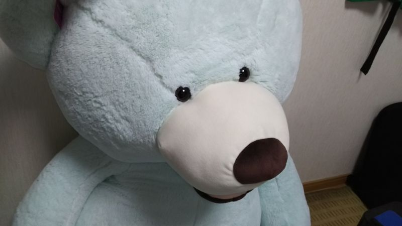 f:id:muryoari:20191212225714j:plain