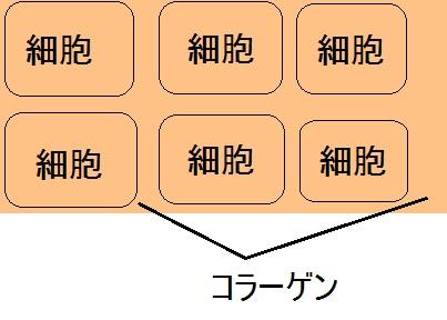 f:id:musan0418:20170104170142j:plain