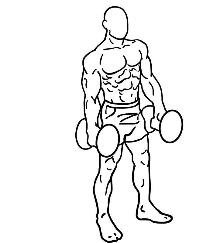 f:id:muscle178:20190318200754p:plain