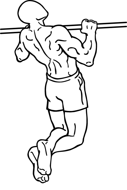 f:id:muscle178:20190321180659p:plain