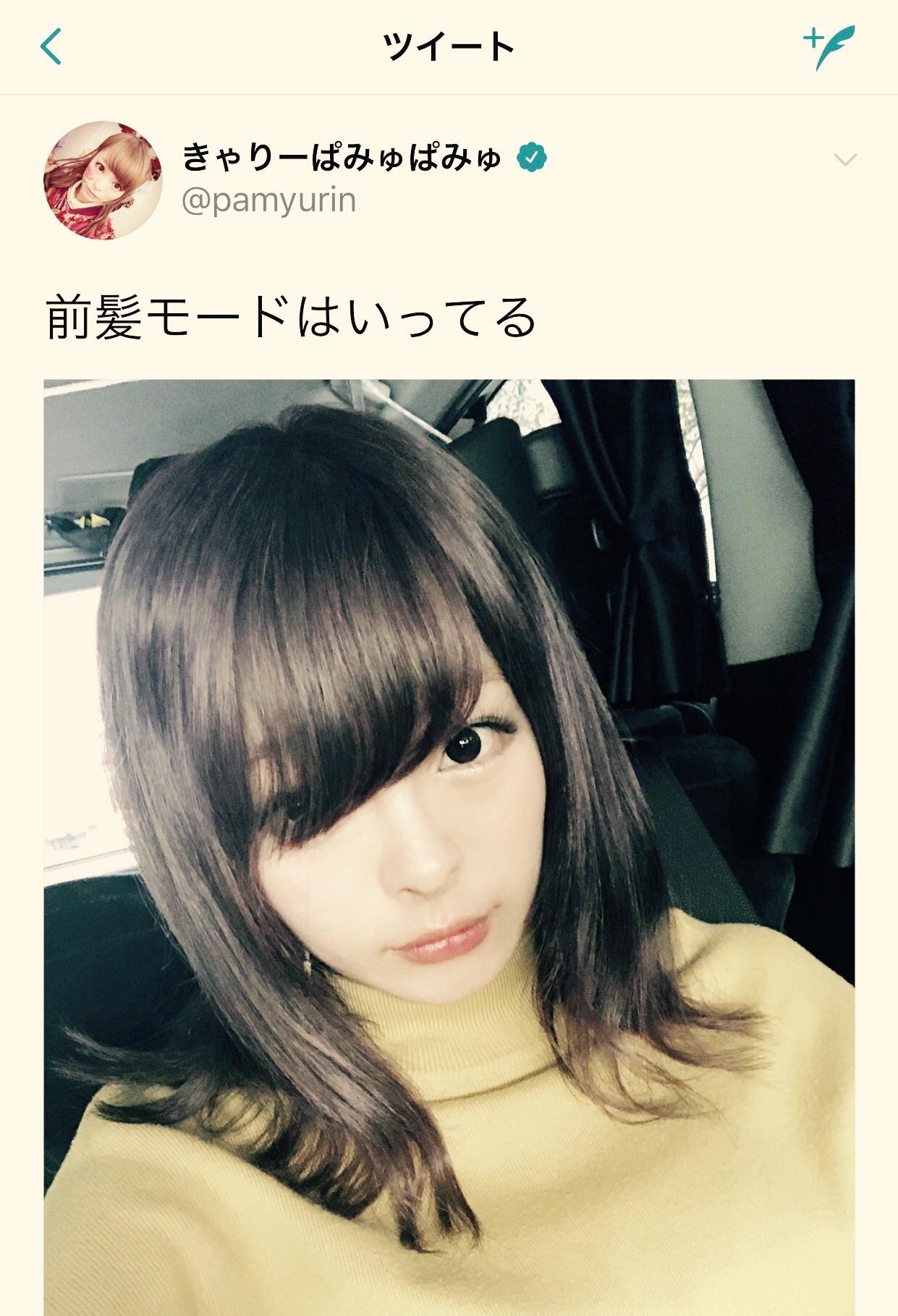 f:id:mushimushi06:20171018000925j:image