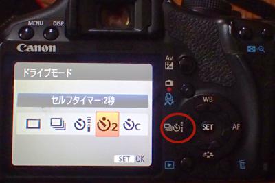 f:id:mushitomo:20160823151939j:plain