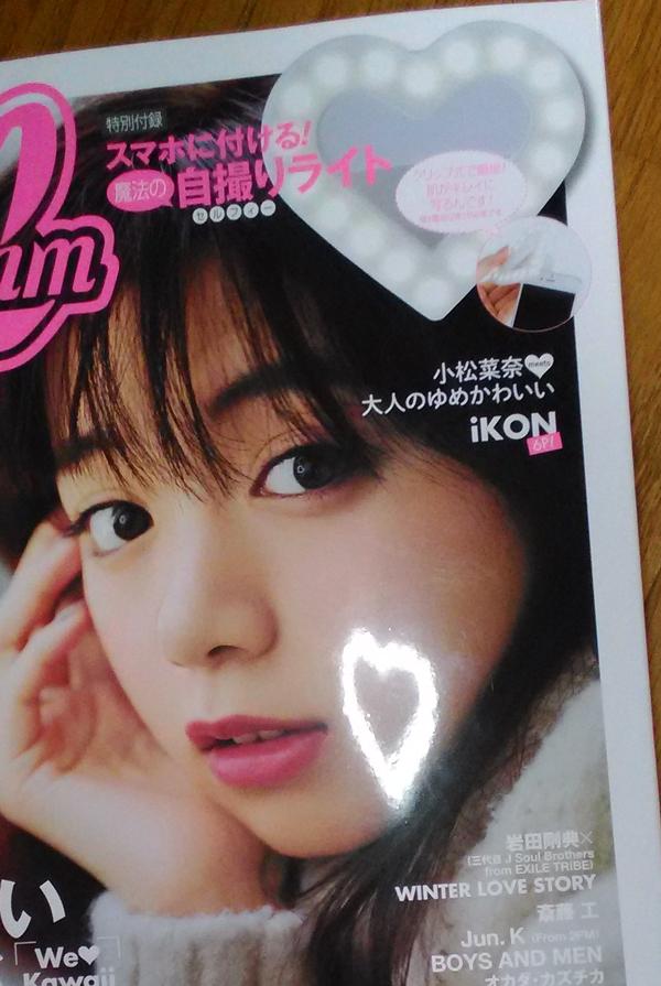 f:id:mushitomo:20161229233048j:plain