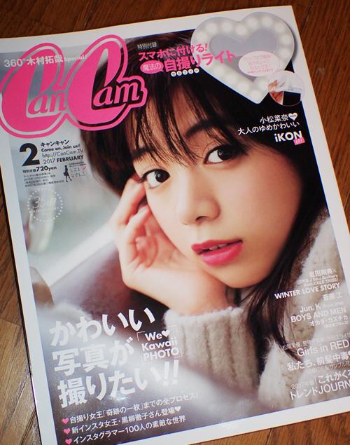 f:id:mushitomo:20161230010435j:plain