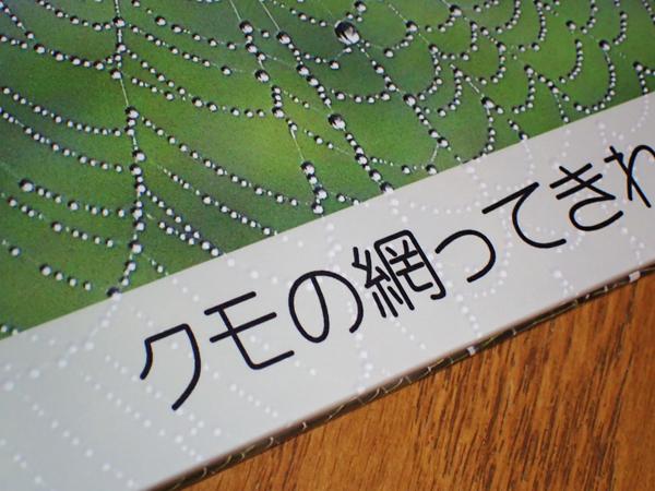 f:id:mushitomo:20171014002526j:plain