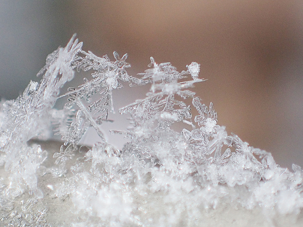コンデジで撮影した雪の結晶