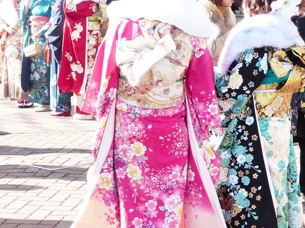 f:id:mushitomo:20190120204858j:plain