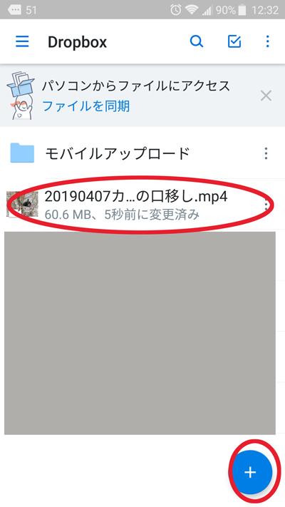 f:id:mushitomo:20190503130156j:plain