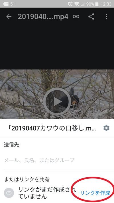 f:id:mushitomo:20190503130243j:plain