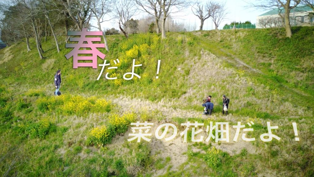 f:id:music-satokibi:20170327115459j:plain