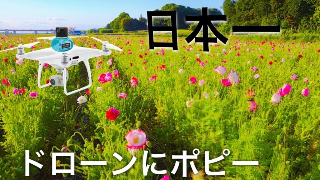 f:id:music-satokibi:20170605072934j:plain