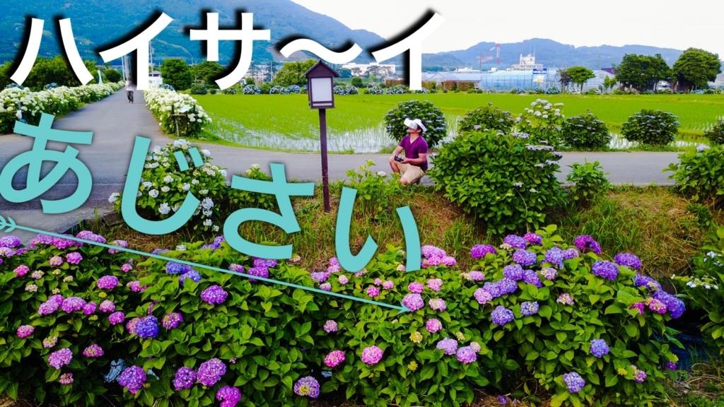 f:id:music-satokibi:20170620065101j:plain