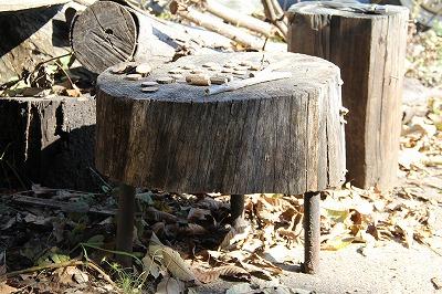 f:id:musikusanouen:20111118193017j:image