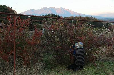 f:id:musikusanouen:20111126195320j:image