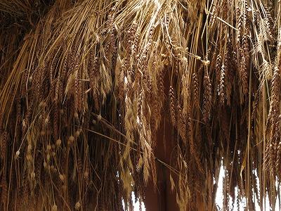 f:id:musikusanouen:20120718162145j:image