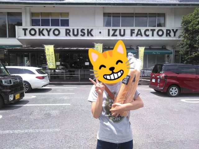 f:id:musyokunofutari:20210211124345j:image