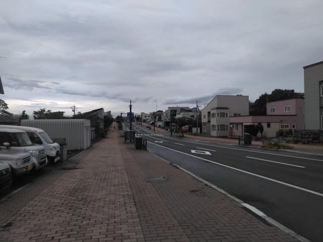 f:id:musyokunofutari:20210216160809j:plain