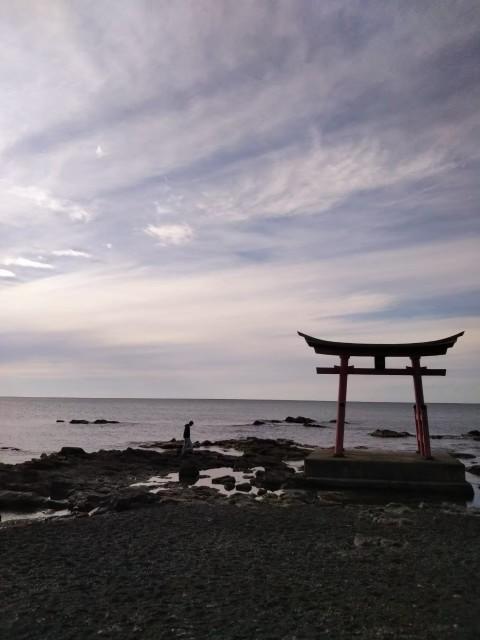 f:id:musyokunofutari:20210303173247j:image