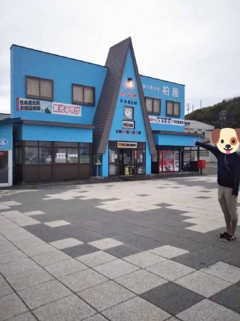 f:id:musyokunofutari:20210307094801j:plain