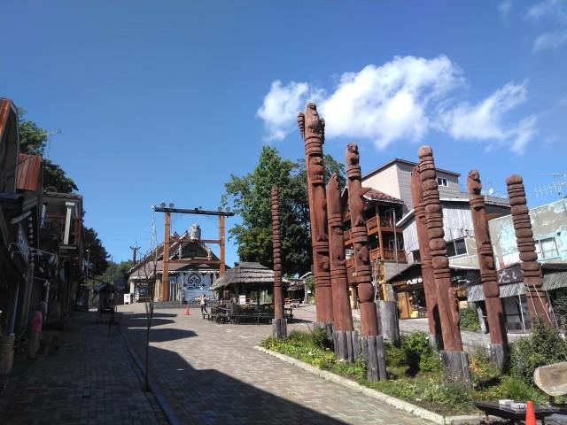 f:id:musyokunofutari:20210313183924j:image