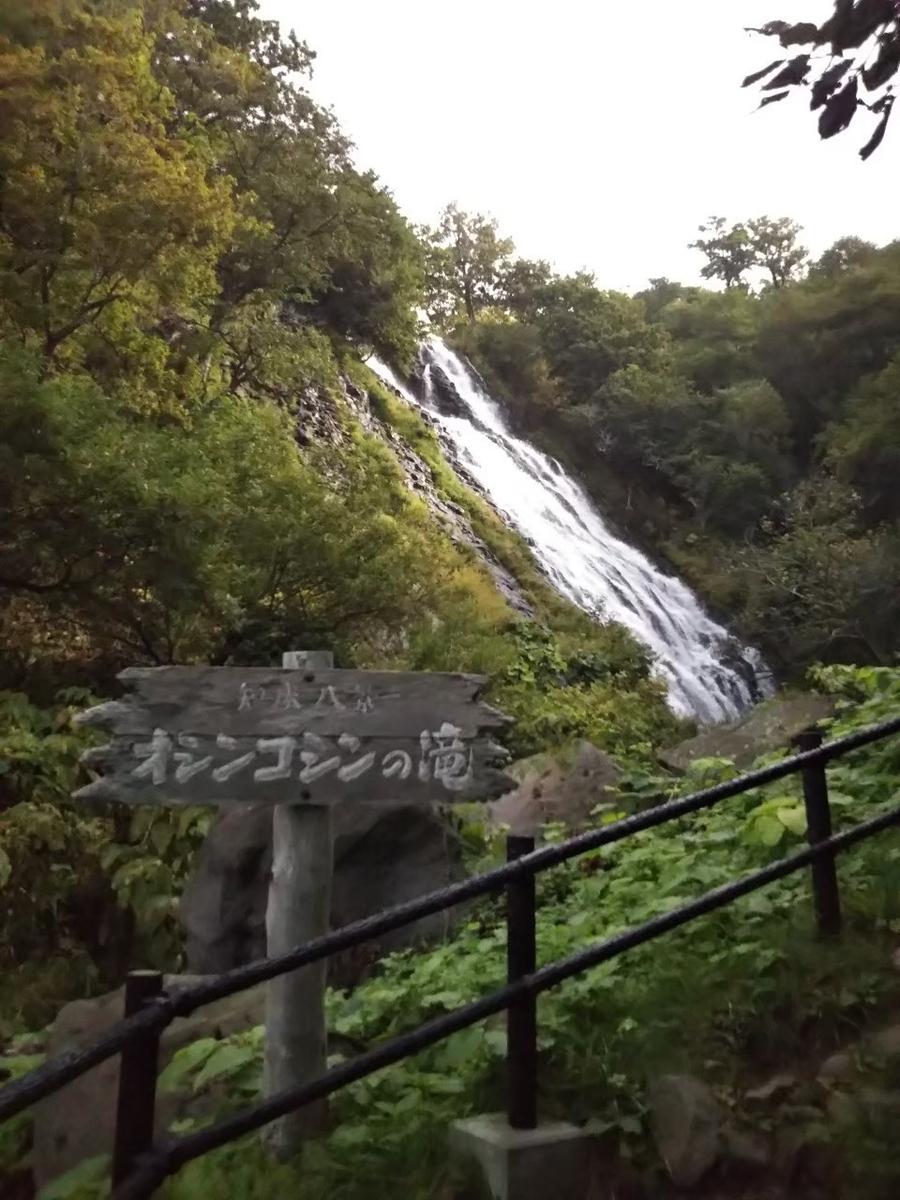 f:id:musyokunofutari:20210324141055j:plain