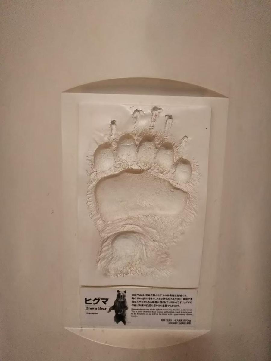 f:id:musyokunofutari:20210324141113j:plain
