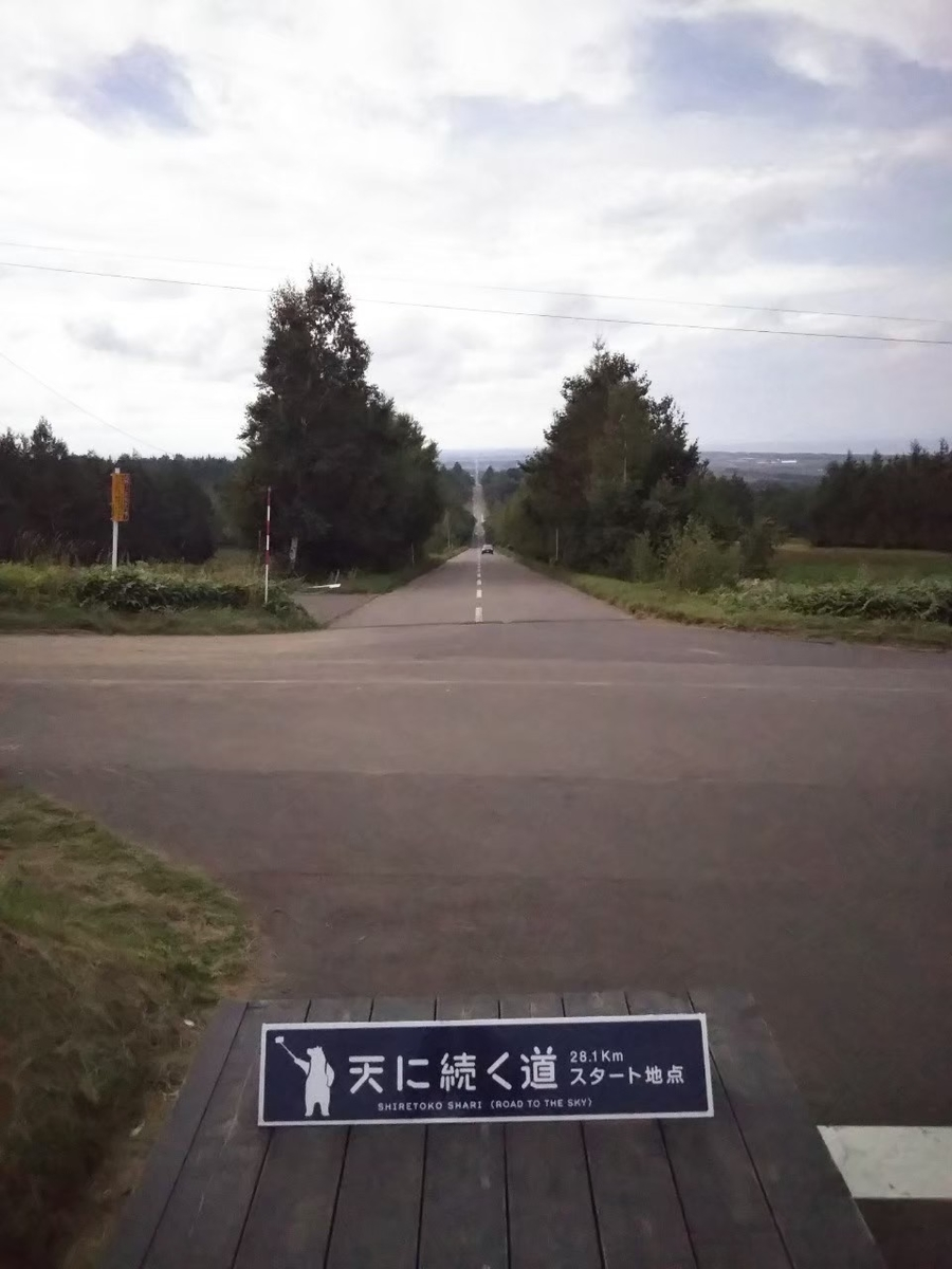 f:id:musyokunofutari:20210324145300j:plain
