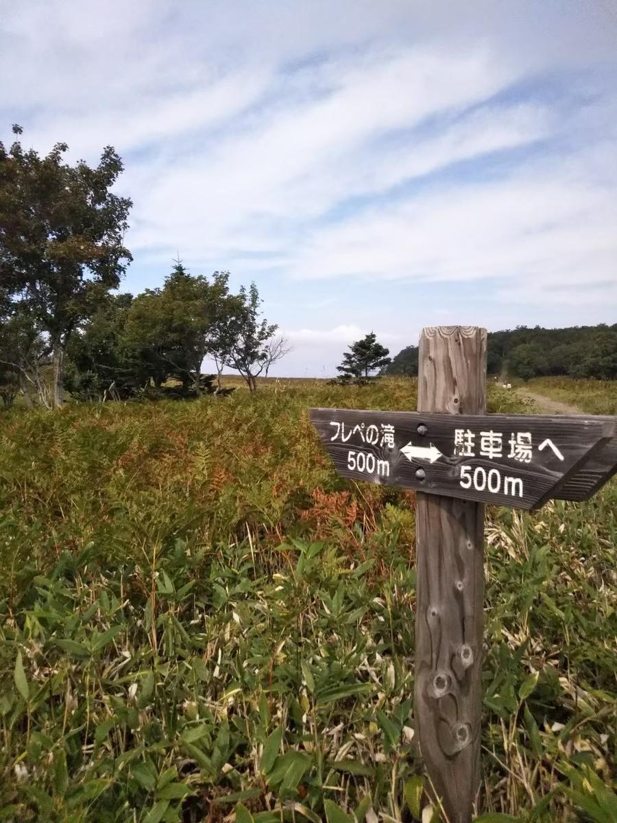 f:id:musyokunofutari:20210324145348j:plain