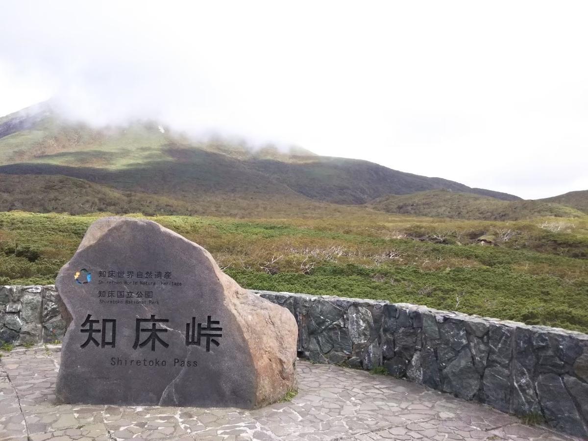 f:id:musyokunofutari:20210412205406j:plain