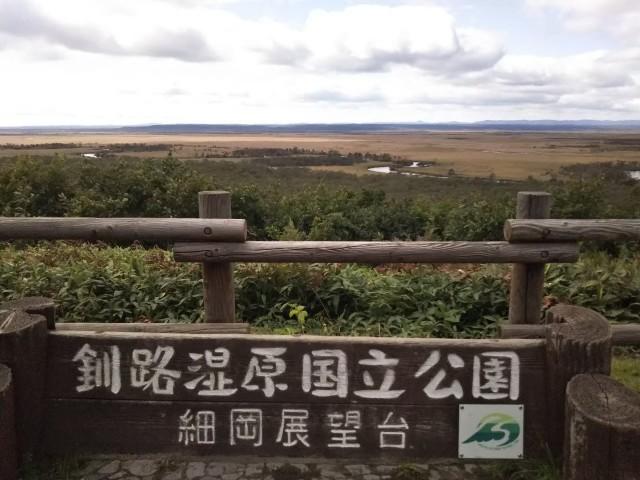 f:id:musyokunofutari:20210519211803j:image