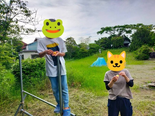 f:id:musyokunofutari:20210530184744j:image