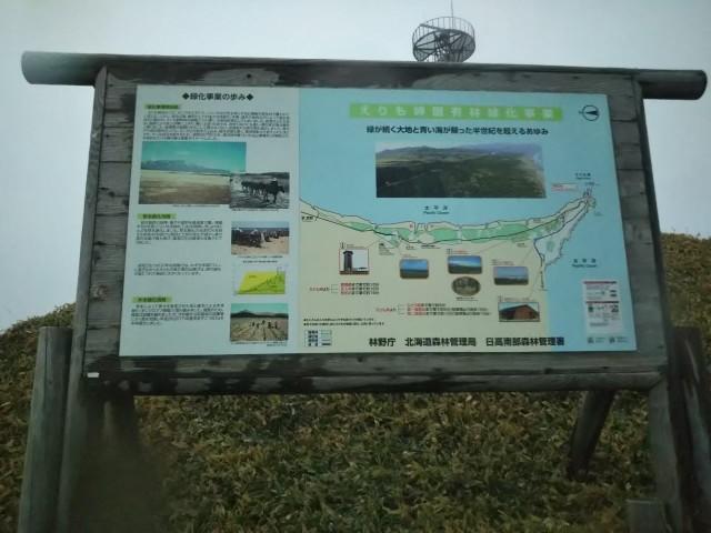 f:id:musyokunofutari:20210701185326j:plain