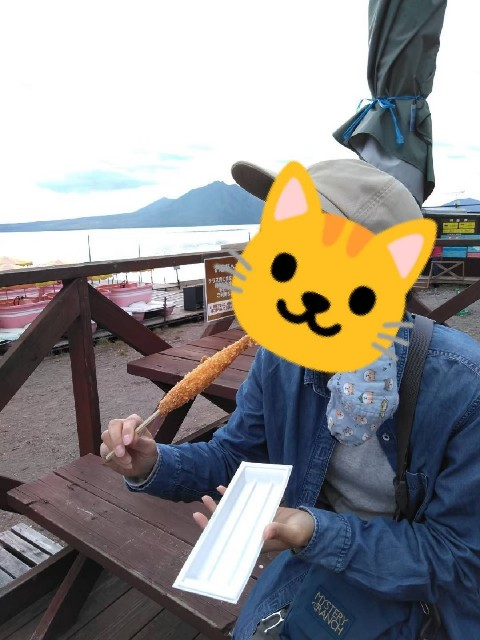 f:id:musyokunofutari:20210706043117j:image