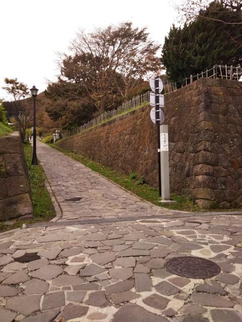 f:id:musyokunofutari:20210716192518j:plain