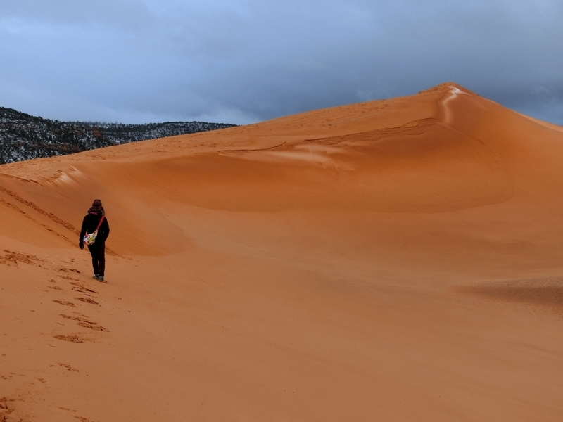 coral_pink_sand_dunes_pic1
